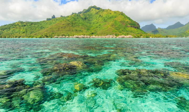 The future of human habitation and economic production in French Polynesia depends on its ability to adapt to and mitigate sea-level rise and coral bleaching and acidification